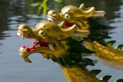 Close up dragon head
