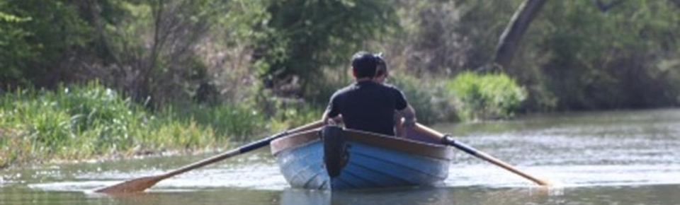 Relax in a row boat
