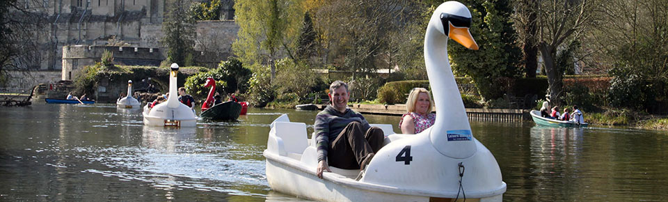 Swan pedalos to sit up to five people.
